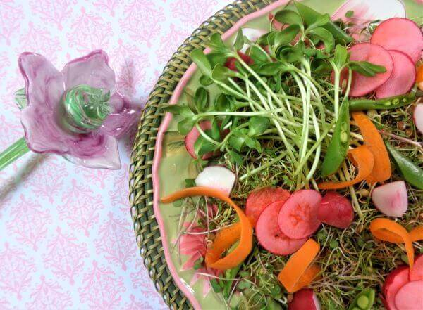 how to grow micro greens and sprouts