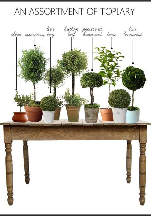 how to make any topiary