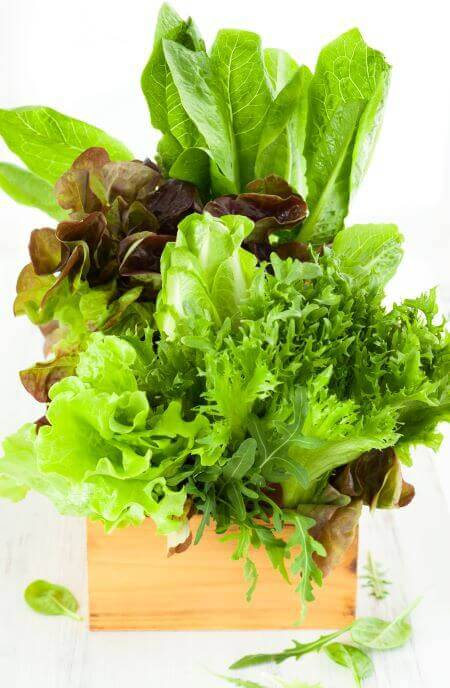 grow your own salad bowl ingredients
