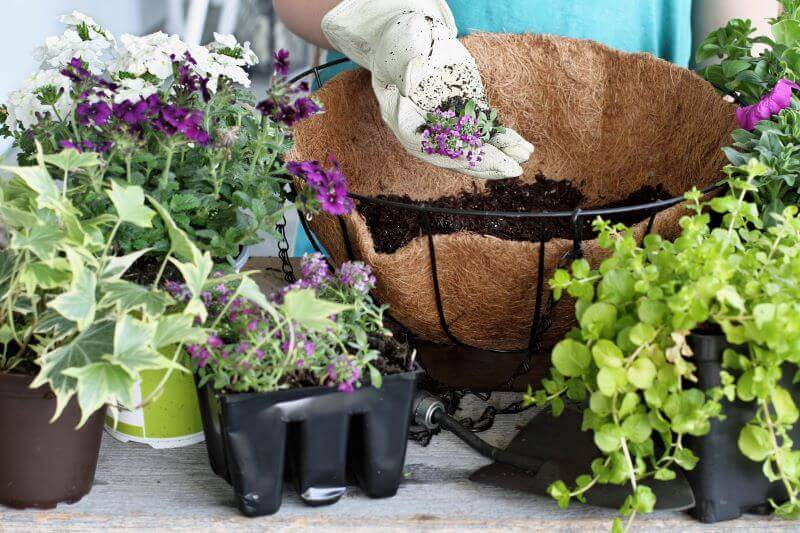 how to plant a hanging basket supplies