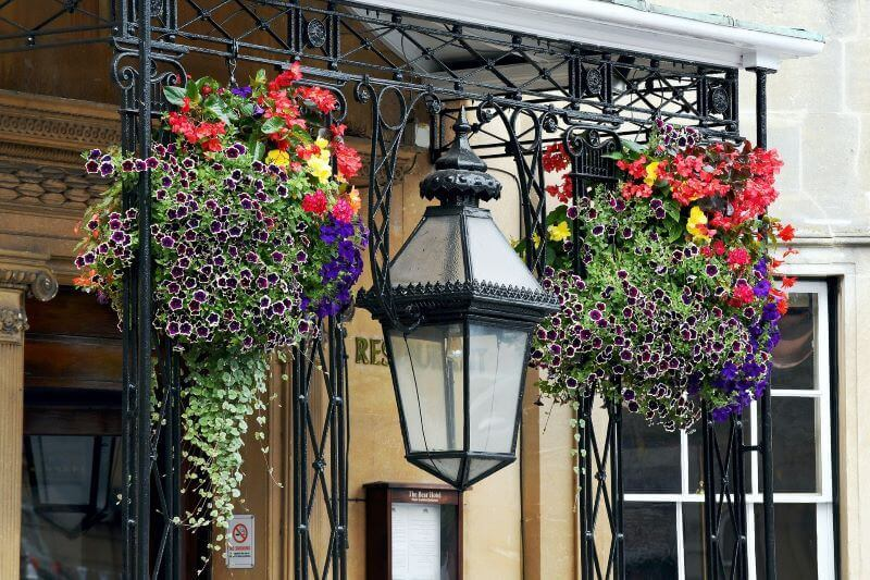how to plant a hanging basket new orleans street with flower baskets