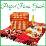 perfect picnic guide graphic