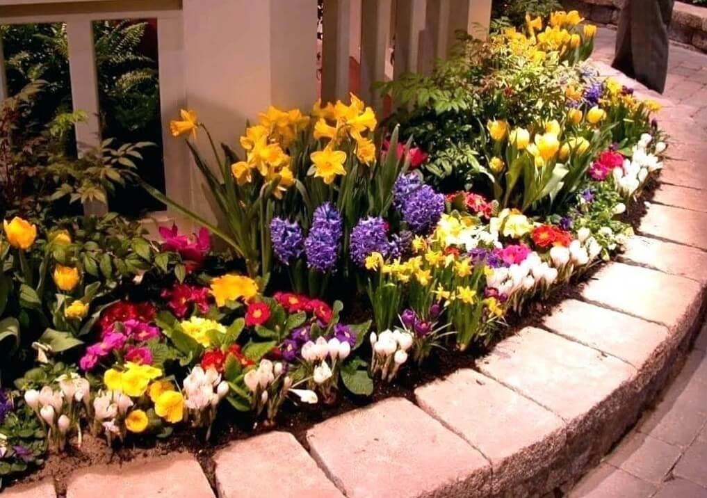 flower garden using fall bulbs
